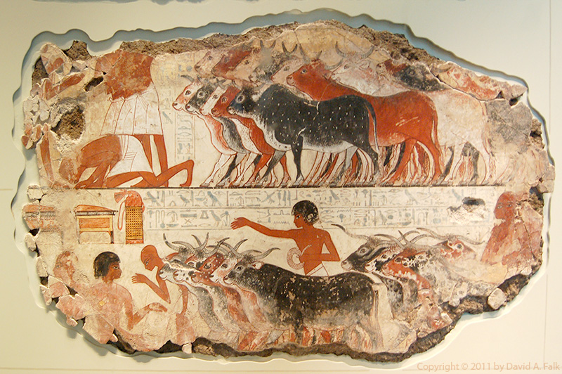 Painting from the tomb of Nebamun showing cattle being herded and storage chests.